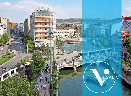 Empowering week in Turkey for Vesalio!