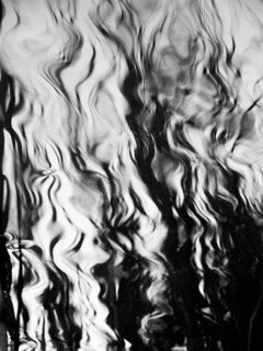 Black/White Acrylic Mount Photograph No. 2 by Janet Cass