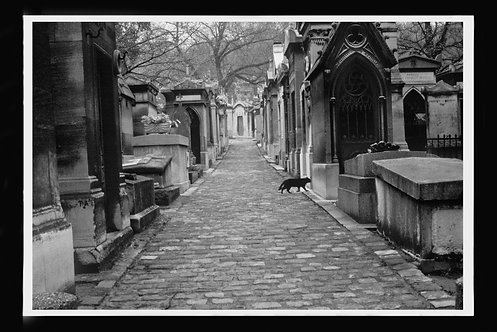 """Pere Lachaise Cemetary, Paris With Black Cat"" by Gregg Felsen"