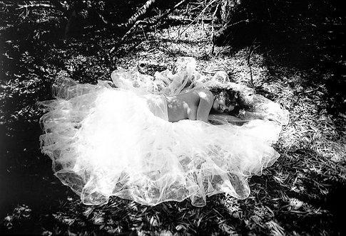 """Dreams"" by Trigger Aoki"