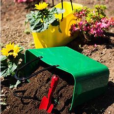 Gardening dark green and yellow hinza ba