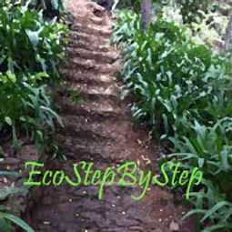 Co-Women Member EcoStepByStep