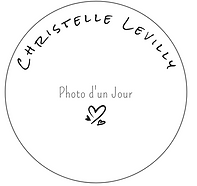Capture.PNG LOGO.PNG