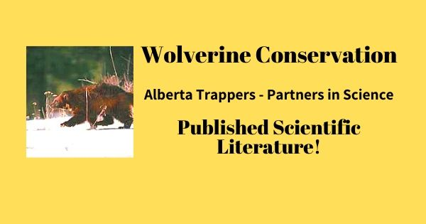 Wolverine Alberta Trappers Association