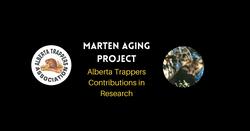 ATA Marten Aging Project