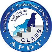 APDT.png