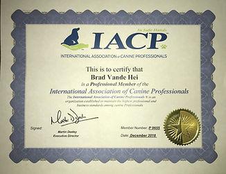 IACP CERT.jpg