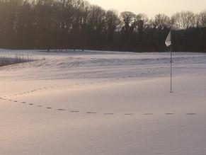 Quand les golfeurs quittent le terrain...