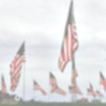 American%20Flags_edited.jpg