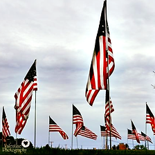 American Flags in downtown Louisville, Ohio
