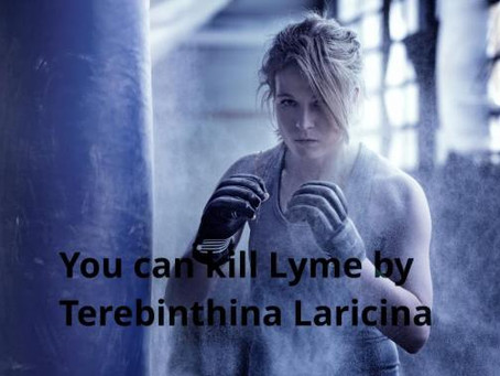 Get rid of Lyme or Borrelia burgdorferi