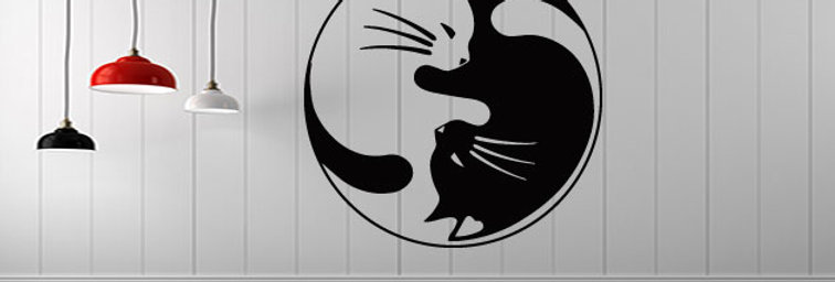 YingYang cat