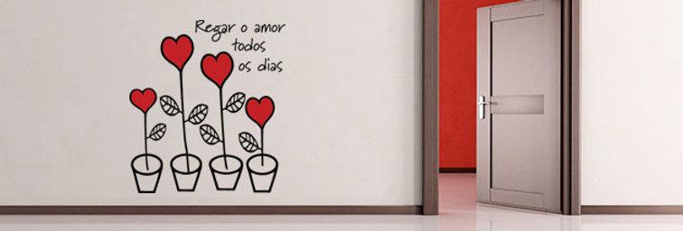 Regar o Amor 2