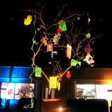 jesse-tree.jpg