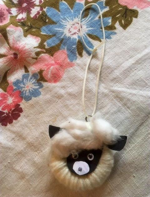 A fantastic fluffy sheep!
