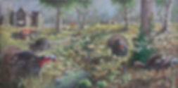 Turkeys no watermark.jpg