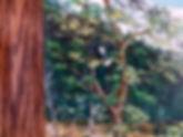 Bears 4.jpg