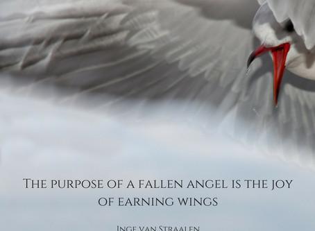 Earning wings