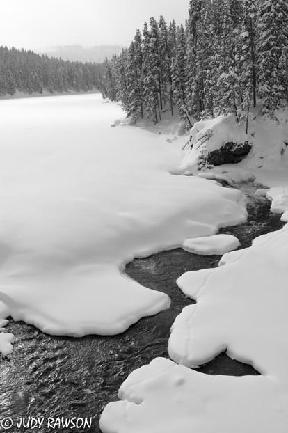 20170112_Yellowstone 4_01641.jpg
