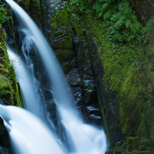 20190814-_7R36075Sol Duc Falls and fores