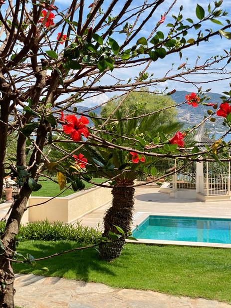 garden - the farrys boutique hotel