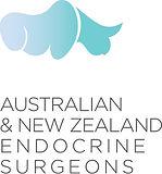 ANZES logo.x.jpg