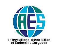 IAES Logo.png