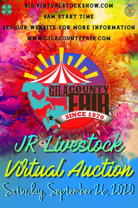 Virtual Auction Poster 2020.jpg