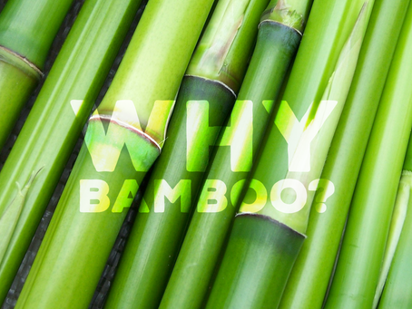 WHY IS BAMBOO A GOOD MATERIAL?