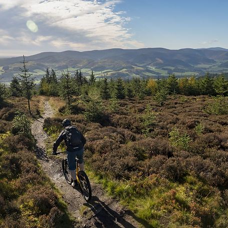 mountain-biking-glentress-vs-david-ander