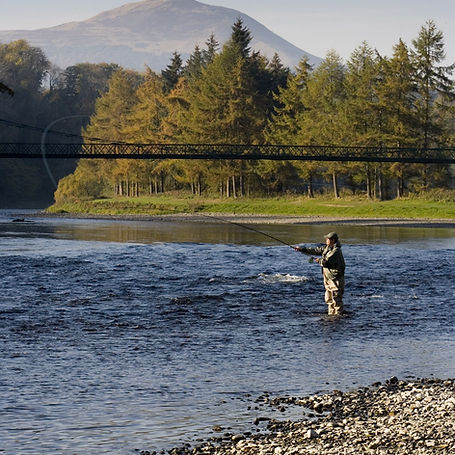 salmon-fishing-dryburgh-vs-paul-tomkins-