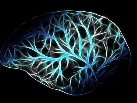 "The ""10% of Your Brain"" Myth"