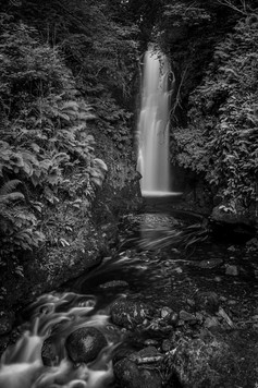 'Cranny Falls' by Mark Gwynne ( 10 marks )