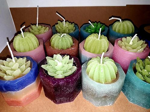 Soy Wax handmade cactus candle