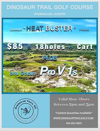 Heat BUster2 JPG.jpg