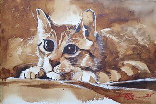CA040 - Cat #2