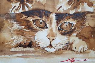 CA039 - Cat #1