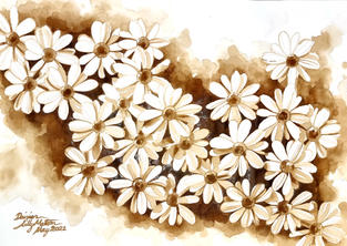 [SOLD] CA018 - Daisies