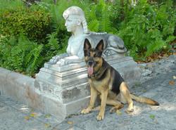 Esther at Vizcaya