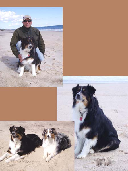 Tony and his Two Dogs