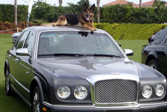 Esther atop the Bentley