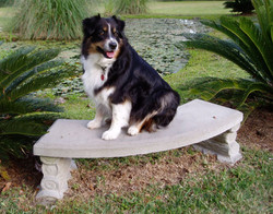 Lucy on bench