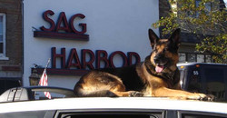 Esther and the Sag Harbor Sign