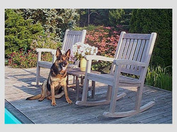 Esther and the Teak Chairs