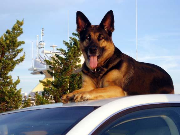 Esther in Sag Harbor