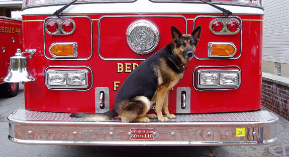 Esther always wanted to be a Firefighter