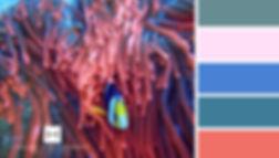 coral color combination.jpg