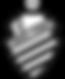 logo-CSA.png