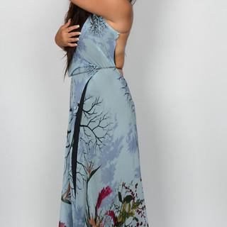 Janeiro Dress