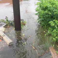 Sustainability Advice including flood risk